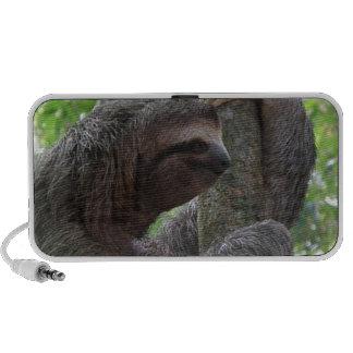 Tree Climbing Sloth Speakers