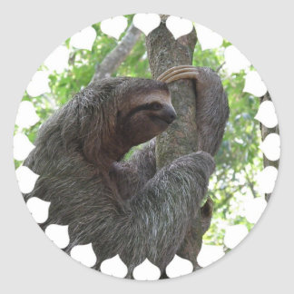 Tree Climbing Sloth Sticker