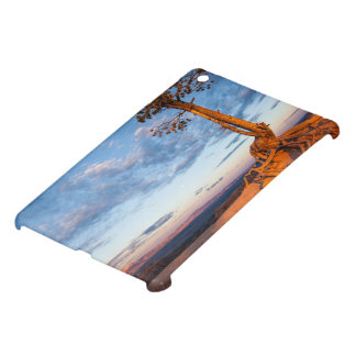 Tree Clings to Ledge, Bryce Canyon National Park iPad Mini Cover