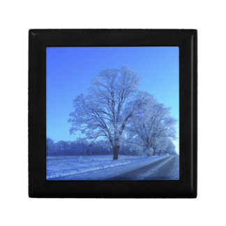 Tree covered in snow on barren landscape. gift box