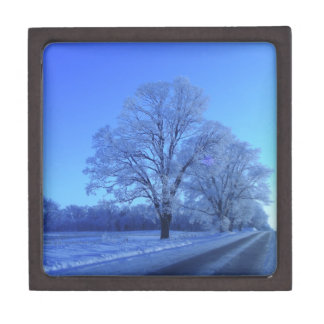 Tree covered in snow on barren landscape. jewelry box