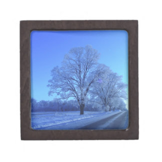 Tree covered in snow on barren landscape. keepsake box