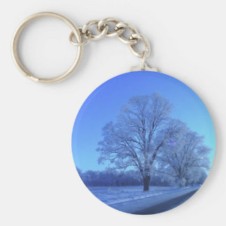 Tree covered in snow on barren landscape. keychain