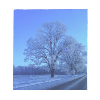 Tree covered in snow on barren landscape. notepad