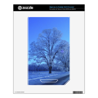 Tree covered in snow on barren landscape. NOOK color decals