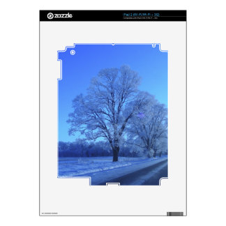Tree covered in snow on barren landscape. decal for iPad 2