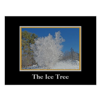 Tree Covered with Ice Poster