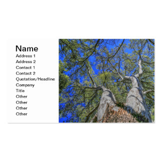 Tree Crown Double-Sided Standard Business Cards (Pack Of 100)