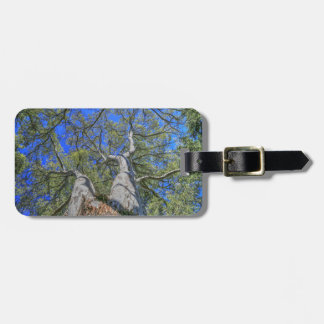 Tree Crown Luggage Tag