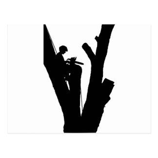 Tree Cutter Postcard