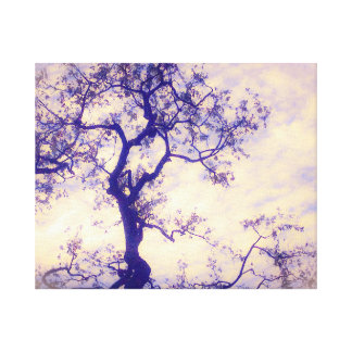 Tree Dance 20x16 Canvas
