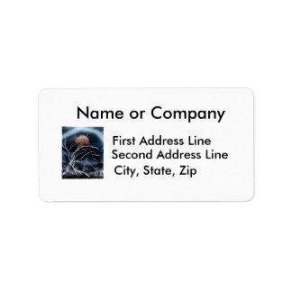 Tree Dark back scary moon spray paint painting Personalized Address Label