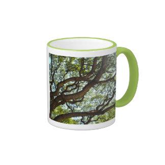 Tree Detail, Oahu, Hawaii Ringer Mug