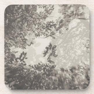 Tree Double Exposure (Platinum) Coaster
