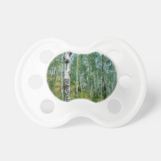 Tree Dreaming Of Birch Baby Pacifiers