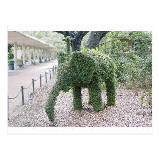 Tree Elephant Postcard