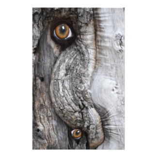 Tree Eyes Bark Stationery