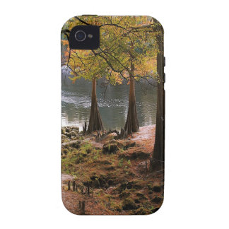 Tree Fall On Calm River iPhone 4/4S Case