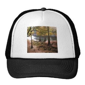 Tree Fall On Calm River Trucker Hats