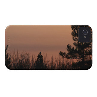 Tree Family iPhone 4 Cover