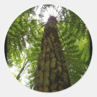 Tree Fern Classic Round Sticker