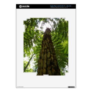 Tree Fern Decal For iPad 3