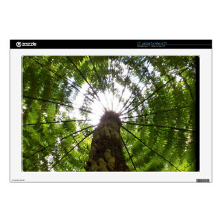 """Tree Fern Decals For 17"""" Laptops"""
