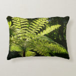 Tree Fern in the Rainforest Accent Pillow