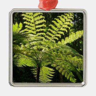 Tree Fern in the Rainforest Metal Ornament