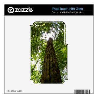 Tree Fern iPod Touch 4G Skin
