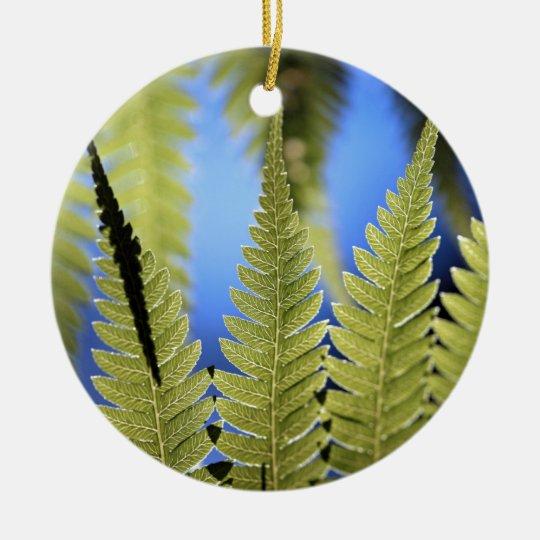 Tree fern leaf detail ceramic ornament