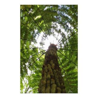 Tree Fern Stationery
