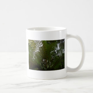 TREE FERN TARKINE NATIONAL PARK TASMANIA AUSTRALIA COFFEE MUG