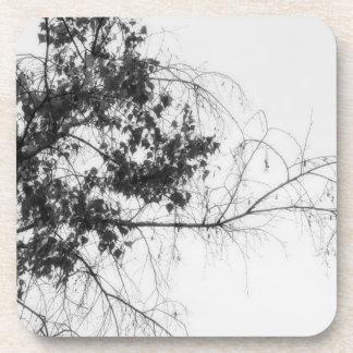 Tree Fingers (B&W) Coaster
