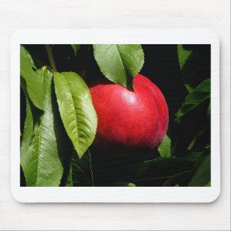 Tree Fresh Nectarine fruit Mouse Pad