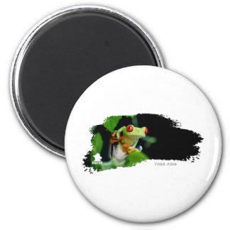 Tree Frog 01 Fridge Magnets