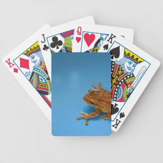 Tree frog against blue background on right bicycle playing cards