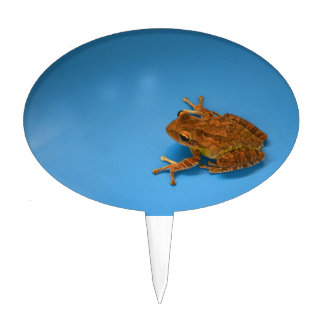 Tree frog against blue background on right cake topper