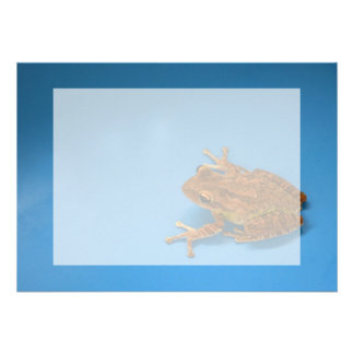Tree frog against blue background on right personalized invite