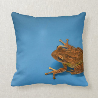 Tree frog against blue background on right throw pillow