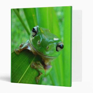 Tree Frog Binder