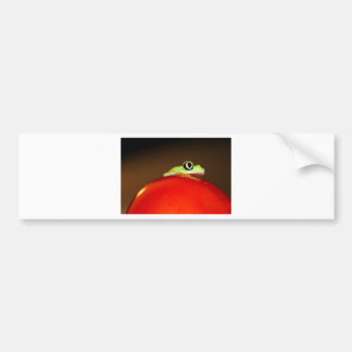 tree frog bumper stickers