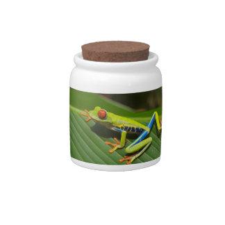 Tree Frog Candy Jars