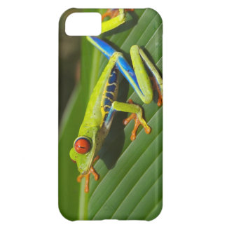 Tree Frog iPhone 5C Cover