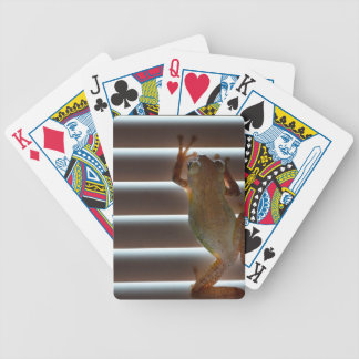 tree frog climbing blinds neat animal photo bicycle playing cards