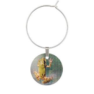Tree Frog Climbing Screen Photograph Wine Glass Charm