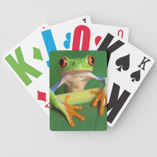 tree frog deck of cards
