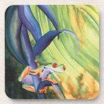 Tree Frog Drink Coaster