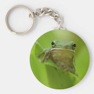 Tree Frog Green Customize jump Keychain