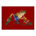Tree Frog Holiday Card